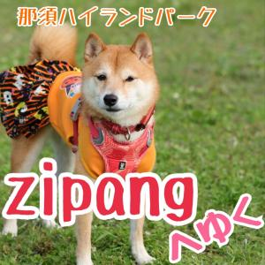 よいち、zipang2020へゆく~お友達編~