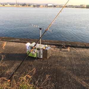 今年の釣行はキス釣りを二回だけ。