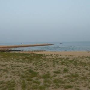 松林ラン から砂浜 ラン
