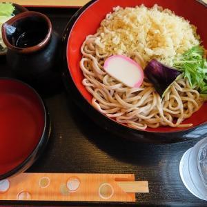 清田区の「蕎麦・たちばな」で冷やしたぬき蕎麦☆茄子が気になる・・・w