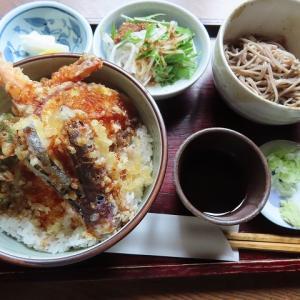 豊平区の「手打ちそば・きっ川」で冷たいミニお蕎麦付きの天丼セット☆