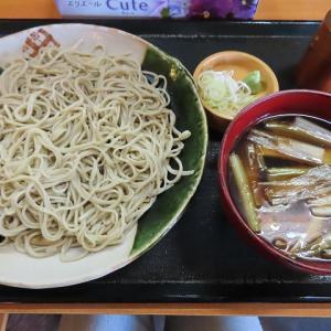 こちらも新そばです☆ランチやセットも充実!東区の「蕎麦・きよ福」でかしわセイロ☆