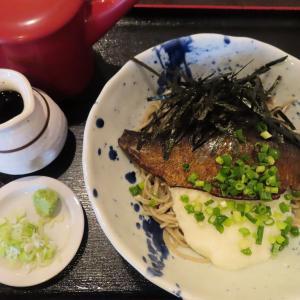 澄川の人気店「蕎麦みやび屋」ギリギリ間に合った期間限定の冷やしにしん蕎麦☆