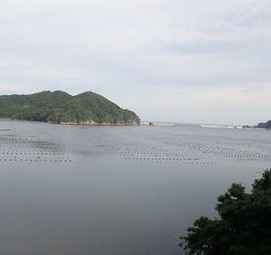 三陸乗り潰し旅⑯ BRTで陸前高田を経て気仙沼へ