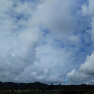 雨雲より先に活動