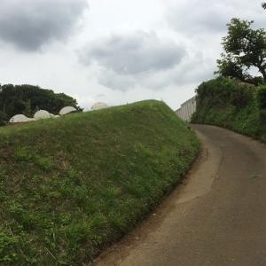 武蔵野の原風景をめぐるユルポタコース