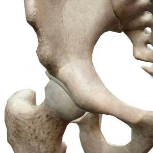 【ペダリング】股関節の位置がどこか、正しく認識できていますか?