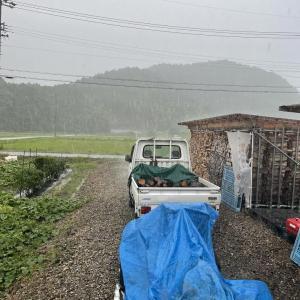 【ひどい!!】薪割り作業中にゲリラ豪雨に巻き込まれた