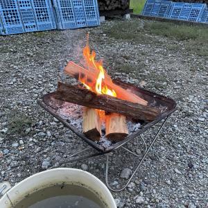 【焚き火】針葉樹スタートで焚く