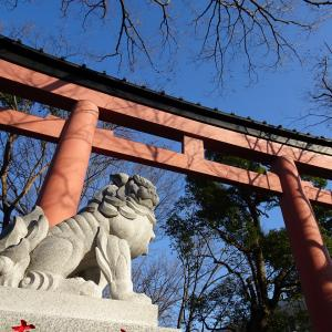 氷川神社とスターウォーズと、その他もろもろ