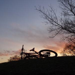 スポーツ自転車に乗り始めて5周年。