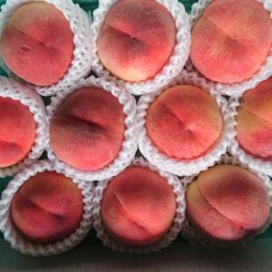 フルーツコレクション桃とメロンと~