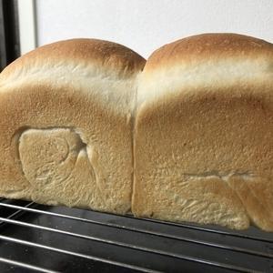 北海道産 春よ恋 の山食パン~ぷるんぷるんのパンに