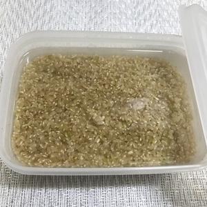 発芽玄米の作り方~水溶性であるギャバを生かす方法を誤っていた・・