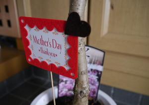 母の日は桜をプレゼント