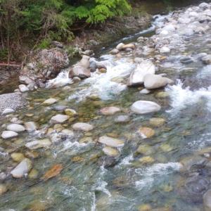 大芦川 渓流12