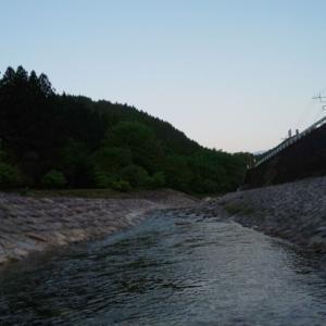大芦川 渓流14