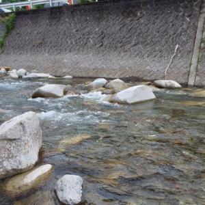 渓流16 大芦川