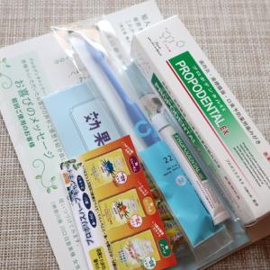 歯周病・口臭予防の専用薬用ハミガキ【プロポデンタルEX】レビュー