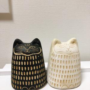 鎌倉で逢った猫