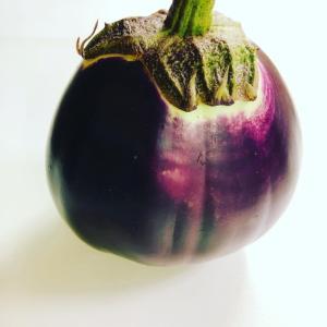 フィレンツェ茄子