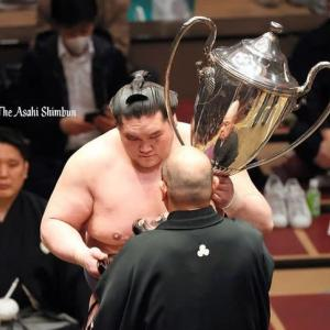 照ノ富士優勝おめでとう!! 足治るといいね💗 外側大腿皮神経痛とは?