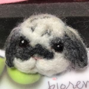 ☆今日は羊毛のお話~! !うちの銀ちゃんを(^_^)