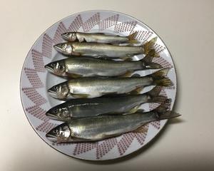 鮎の友釣りとベタの卵(2日目)