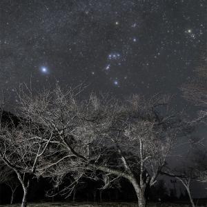 那智公園からの星空
