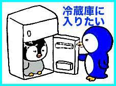人間冷蔵庫があればいいな!!冷蔵庫の中に入りたい!!