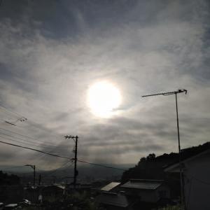 金龍の言葉     夏の空 入道雲見えてました
