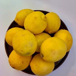 ♡暮らしを整える 食のレシピ レモンブロック ♡