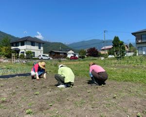 仲間と一緒に農作業♬