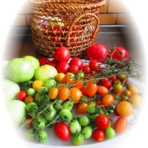 トマト大量消費…♪