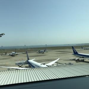 ブリュッセルまで44,000マイル!ANA国際特典航空券を通常より少ないマイル数で利用しよう!!!