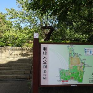 2019.10.9 駅前の梅の香りに誘われて 小田急沿線 自然ふれあい歩道1-05
