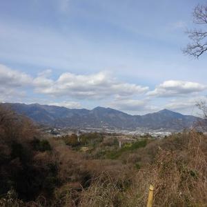 2020.02.19 渋沢丘陵に爽快な自然の味わいを求めて 小田急沿線自然ふれあい歩道3-39
