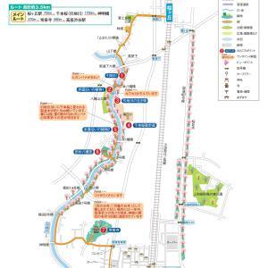 2020.03.25 引地川千本桜と花の寺を巡って 小田急沿線自然ふれあい歩道4-51