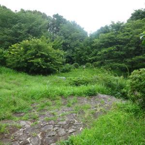 2020.07.05 のどかな田園風景を楽しみながら天王森泉公園を目指して 小田急沿線自然ふれあい歩道4-55
