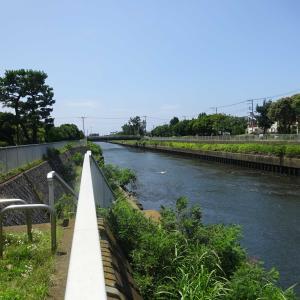 2020.07.19 引地川沿いの緑と由緒ある寺社を巡って 小田急沿線自然ふれあい歩道4-60