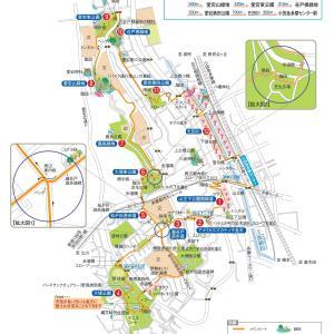 2020.08.15 ニュータウンの緑の小径を一巡り 小田急沿線自然ふれあい歩道5-67