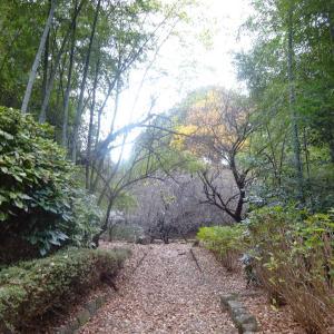 多摩市-6 桜と関戸の歴史散歩コース TOKYO Walking Map