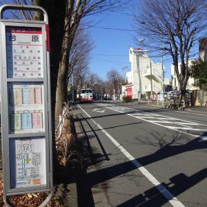 稲城市7 若葉台駅~小田良~若葉台公園コース TOKYO Walking Map 2021.1.13