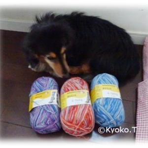 デビーブリスの美しい糸♪