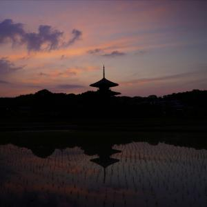 法起寺の水田と夕焼け