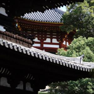 興福寺と堀内果実店