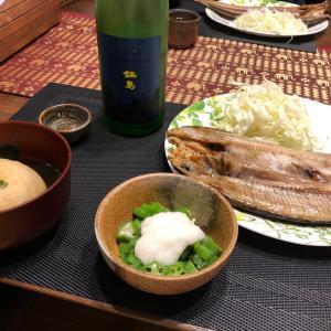鍋島 SUMMER MOON DAY3