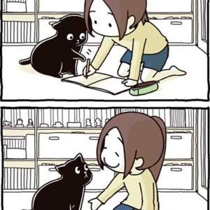 セリフなしの猫あるある漫画が平和で癒されます