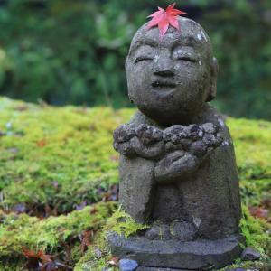 京都大原三千院 苔の上のわらべ地蔵様