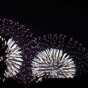 琵琶湖花火 高みの見物かな?